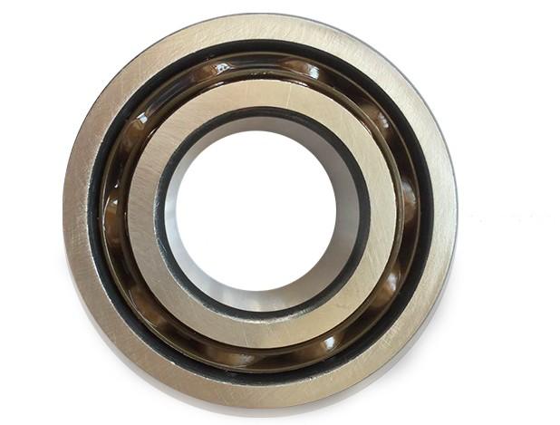 SKF NK68/25 needle roller bearings